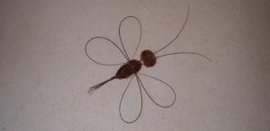 libellule décorative en vannerie