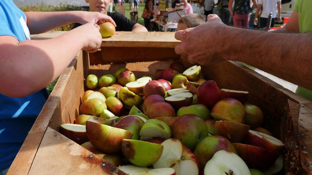 découpe de pommes