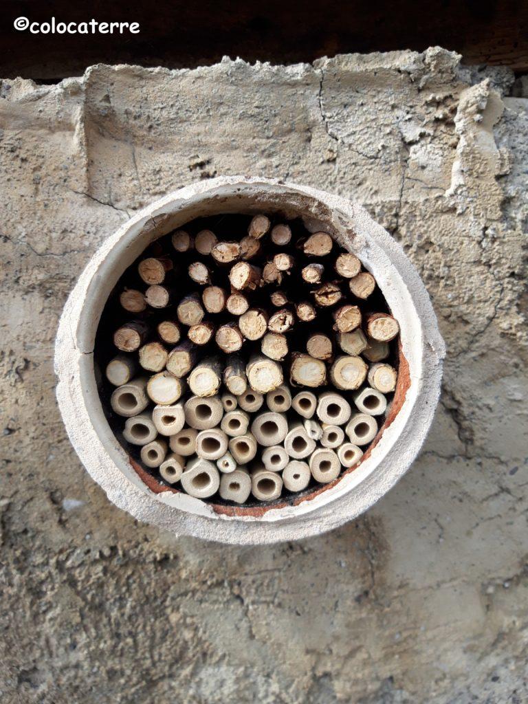nichoir à abeilles solitaires