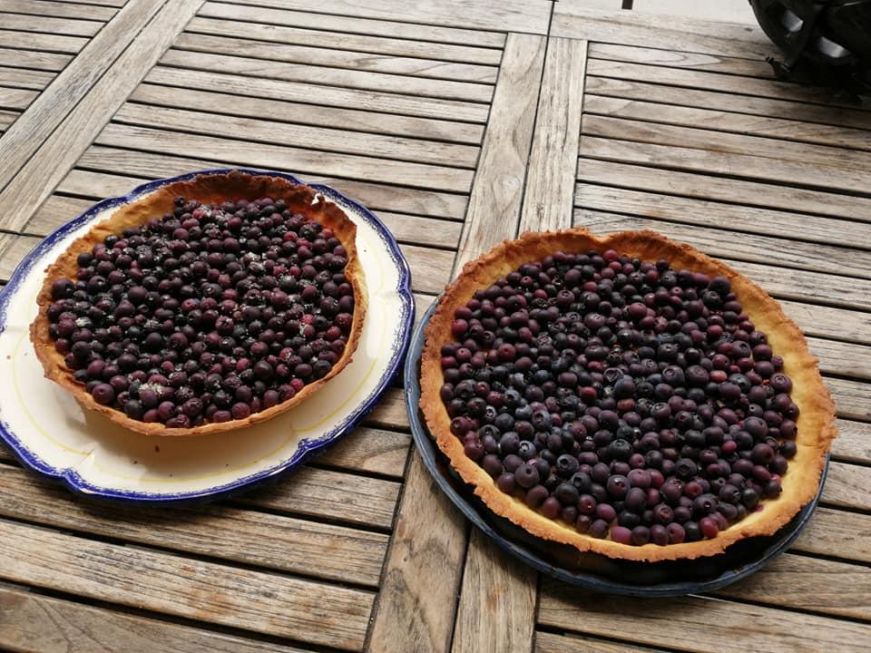 Goûter : tarte aux fruits rouges